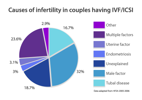 Causes of infertility in couples having IVF/ICSI